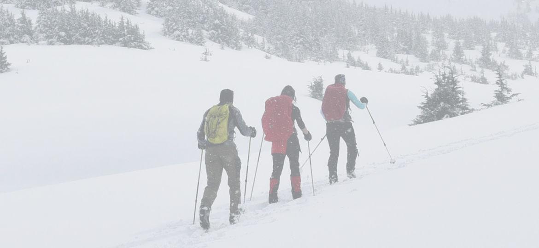 skifond